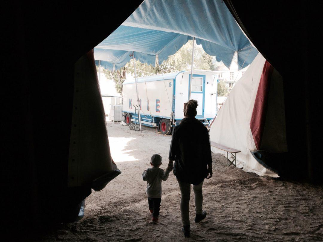Non, mes enfants n'iront pas voir le cirque Knie ce weekend